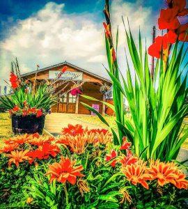 Hampton Farm Shop Res-min